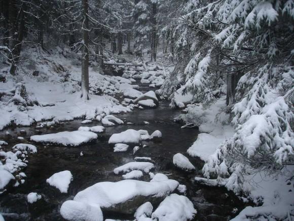 potok Łomnica w drodze do Samotni