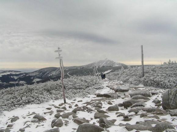 Główny Szlak Sudecki na Śląskim Grzbiecie z widokiem na Śnieżkę