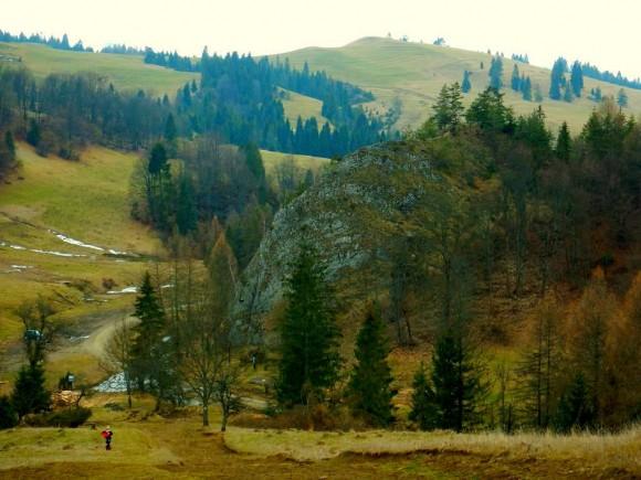 Kociubylska Skała nad składem drewna