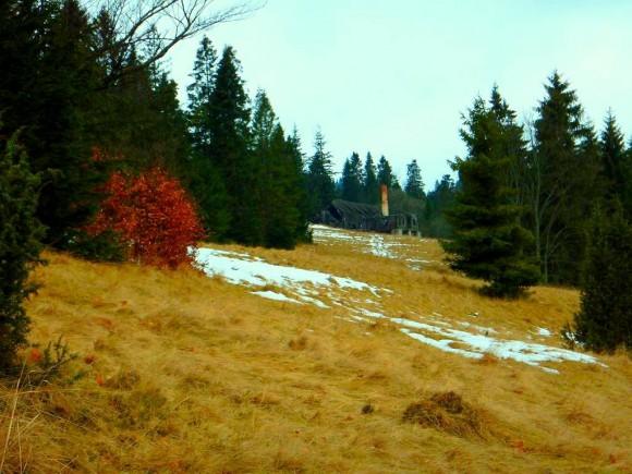 ruiny spalonej bacówki, pozostałości spółdzielni poniżej Wierchliczki