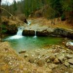 Z Jaworek przez rezerwat Biała Woda na Wysoką i Durbaszkę