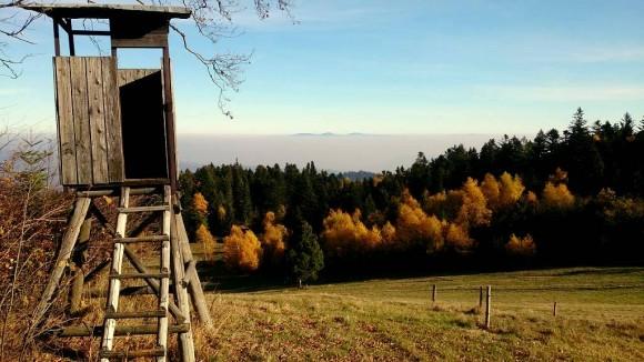 widoki z polany pod szczytem Krawcowej