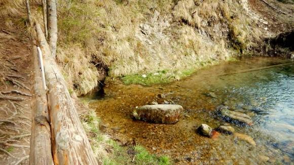 wywierzysko chochołowskie kilkanascie metrów z boku szlaku