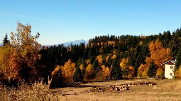 kolorowa polana w dolinie potoku Velka Svinka i Tatry w oddali