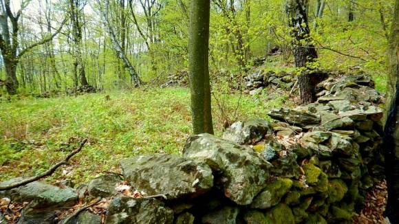 kamienny mur, pozostałości grodziska przed przełęcza