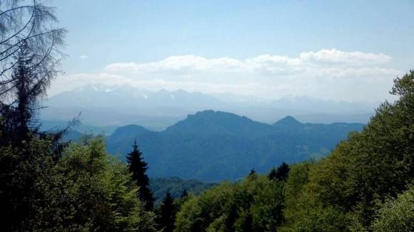 widok na Tatry z jednej z polan Dzwonkówki