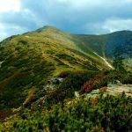 Z Doliny Żarskiej przez Goły Wierch na Barańca i Smreka