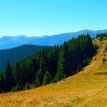 W paśmie Kostrzycy na Czarnohorze, czyli wędrówka przez trzy połoniny