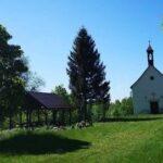 Na Borówkowej Górze oraz zwiedzanie Lądka- Zdroju, czyli perły Gór Złotych