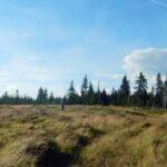 Przez Volovec i Skalisko na Złoty Stół w Górach Wołowskich
