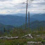Na Stolicę – kulminację Gór Stolickich na Słowacji